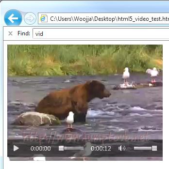 Video_Control_IE_01.jpg