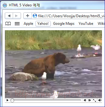 Video_Control_Safari_01.jpg